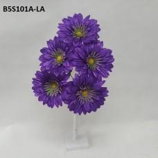 B5S101A