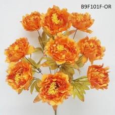 B9F101F