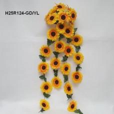 H25R124